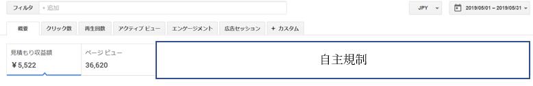 アドセンス収益が1000円を超えたときのサイトの記事数とPV数を公開!